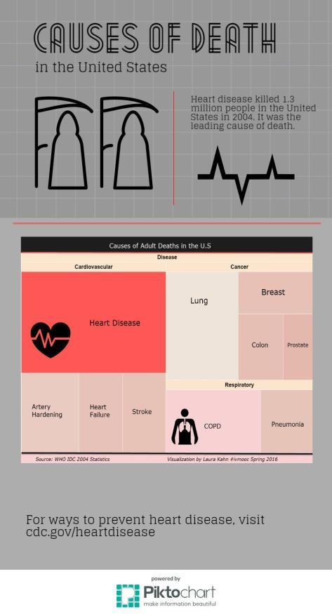 death-causes-2004-2