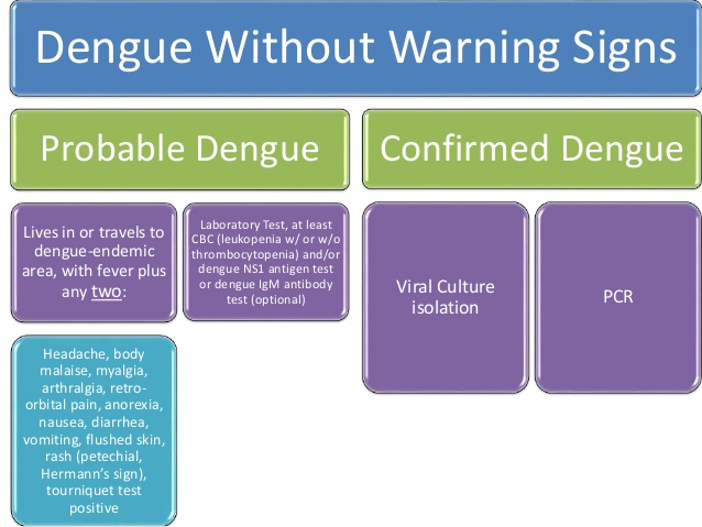 dengue-12-638